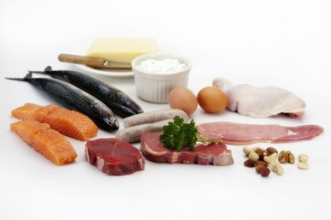 Proteins and Their Importance