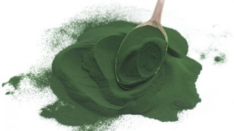 Reasons Why You Must Take Spirulina