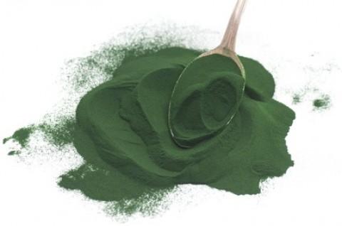 Reasons Why You Must Take Spirulina